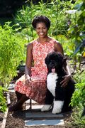 Michelle-obama-FLOTUS-official