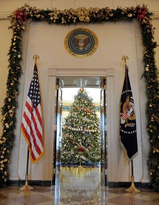 View of 2012 WH tree