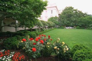 Rose-garden-2006